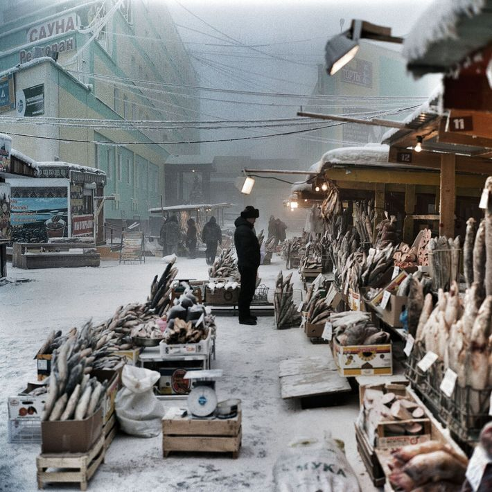 There is no problem with keeping fish frozen in this outdoor market, where fish are displayed ...