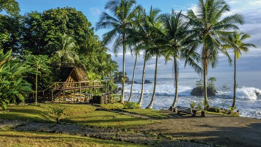 Colombia: Pulse of the jungle, call of the sea