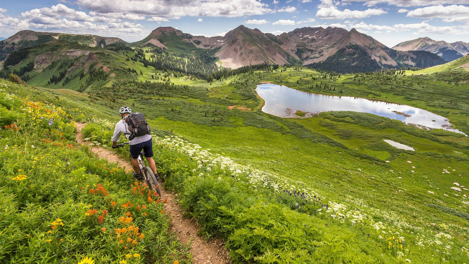 Mountain biking on the long-distance Colorado Trail, which runsfor 486 miles fromWaterton Canyon, southwest of Denver, ...