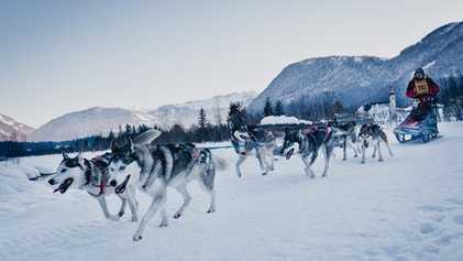 Top 8: Unique Alpine winter experiences