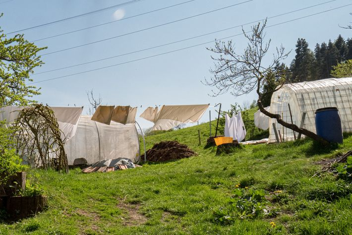Laundry hangs outside the home of Jean Gerik, a patient with a chronic condition that requires ...
