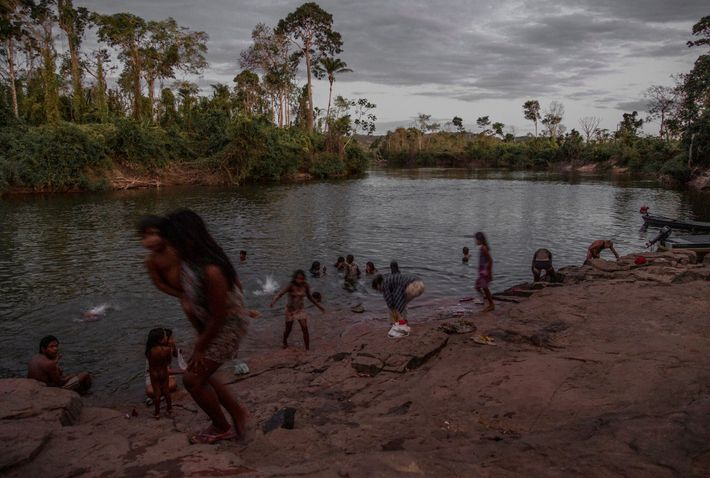 The Kayapó, in the Xingu River basin in the central Amazon region, struggle to preserve their ...