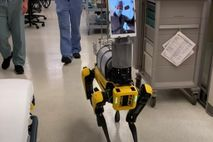 Spot, a dog-like robot developed by Boston Dynamics, allows health workers at Brigham and Women's Hospital ...