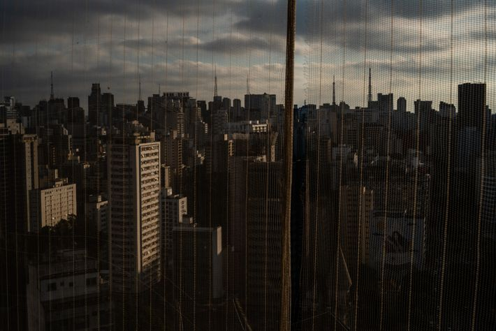 In a city as densely populated as downtown São Paulo, it can be easy for a ...