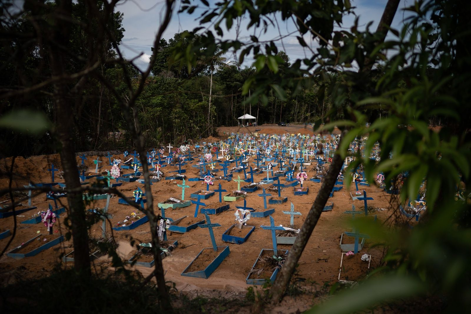 Graves for victims of COVID-19 fill a new section of Nossa Senhora Aparecida cemetery, in Manaus. ...