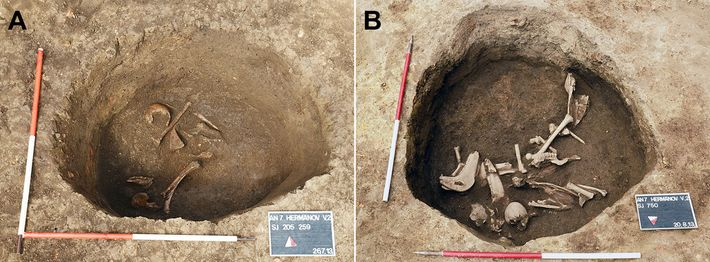 The burial pit at Hermanov vinograd near the beginning of the excavation (right), with animal bones ...