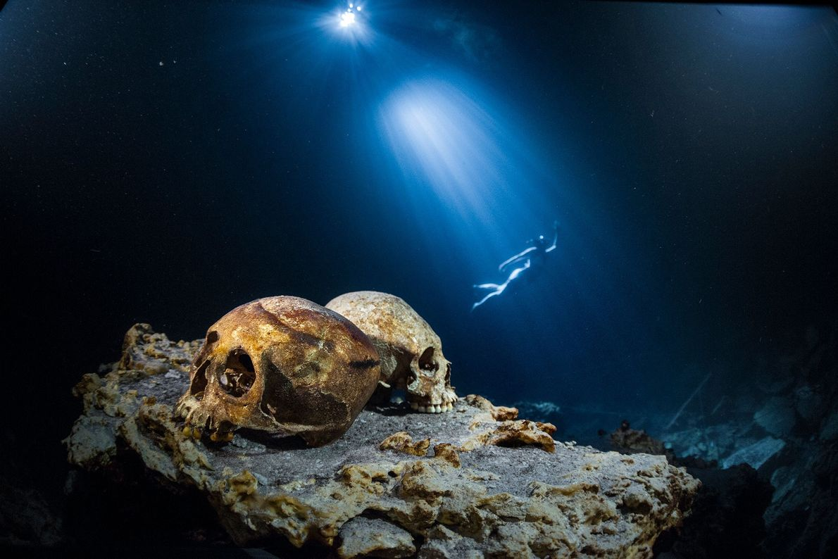 A diver moves through the water behind two skulls on a rocky ledge in the Punta ...
