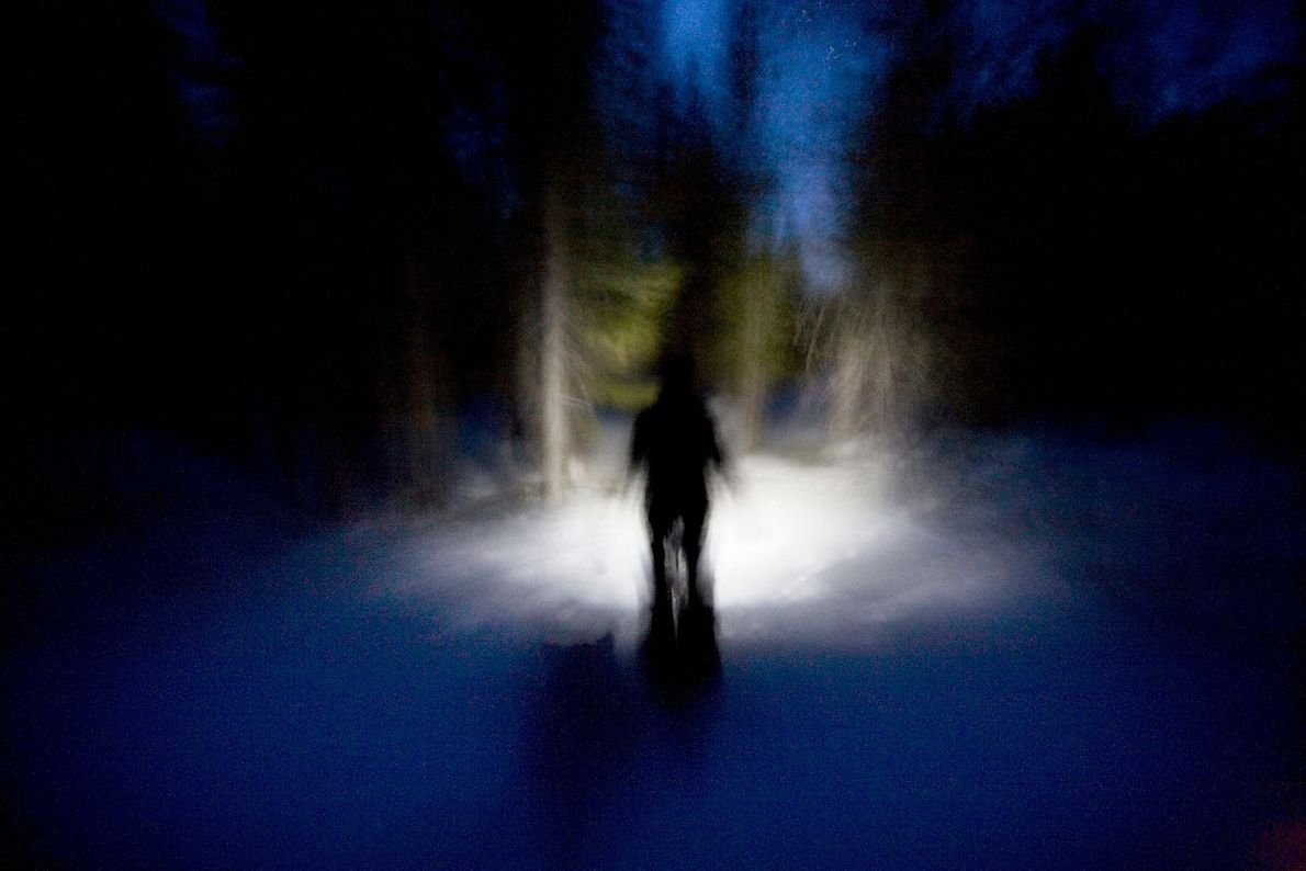 A man shines a light in front of him as he walks through the trees on ...
