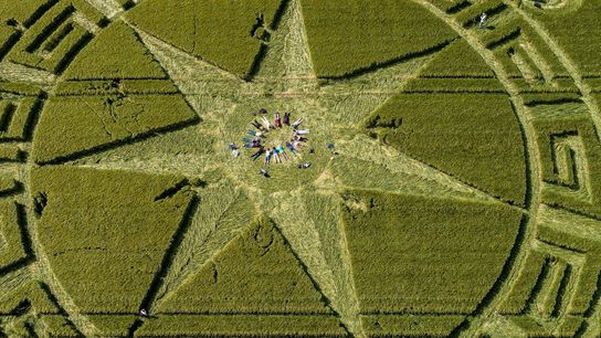 Crop circle enthusiasts lay down for a ritual in Dorset.