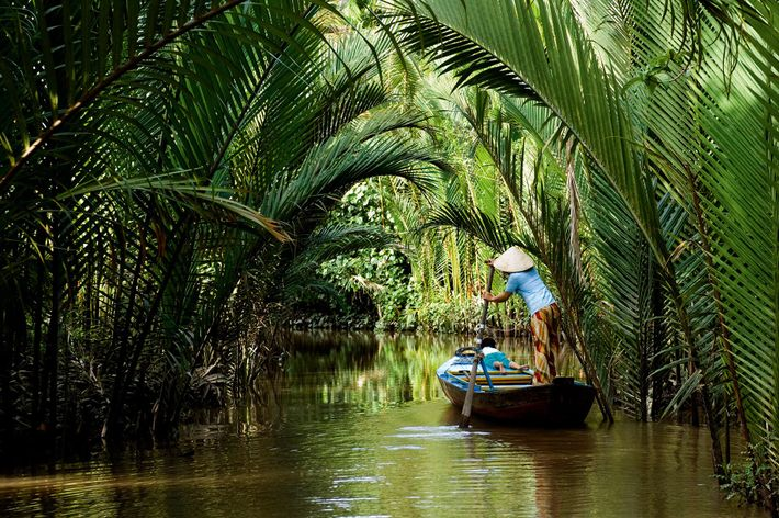 Mekong Delta in Vietnam is an enormous twisting maze of rivers, swamps and islands.