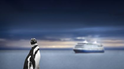 The rise and rise of expedition cruises