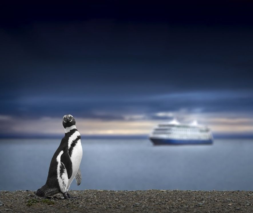 Until recently, expedition cruises were regarded as the preserve of serious wildlife and wilderness fans