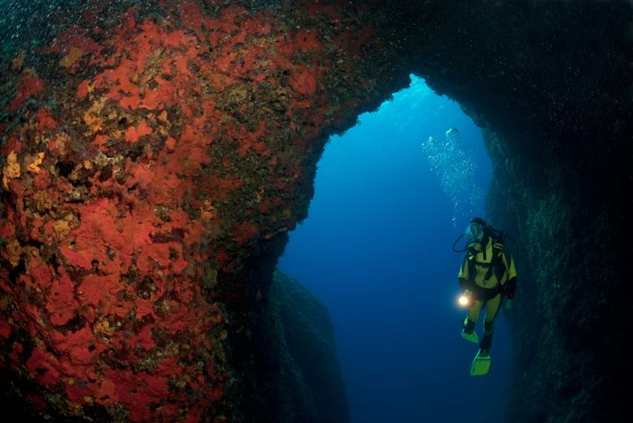The turquoise waters around crab claw-shaped Zakynthos make it the go-to diving destination of the Ionian ...