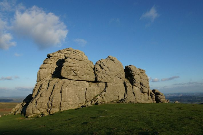 Dartmoor National Park is known for its free ranging animals and range of stunning scenery.
