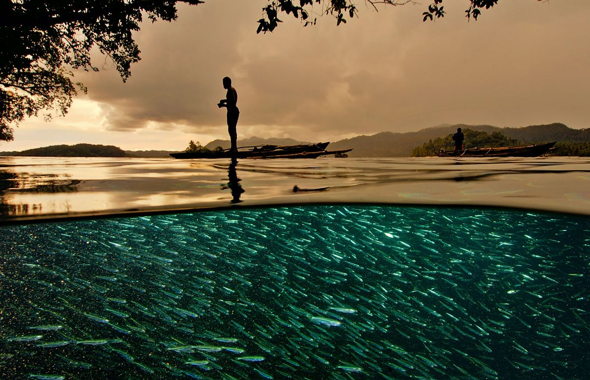 A Papuan fisherman stands on a small outrigger over a school of swirling baitfish in Raja ...