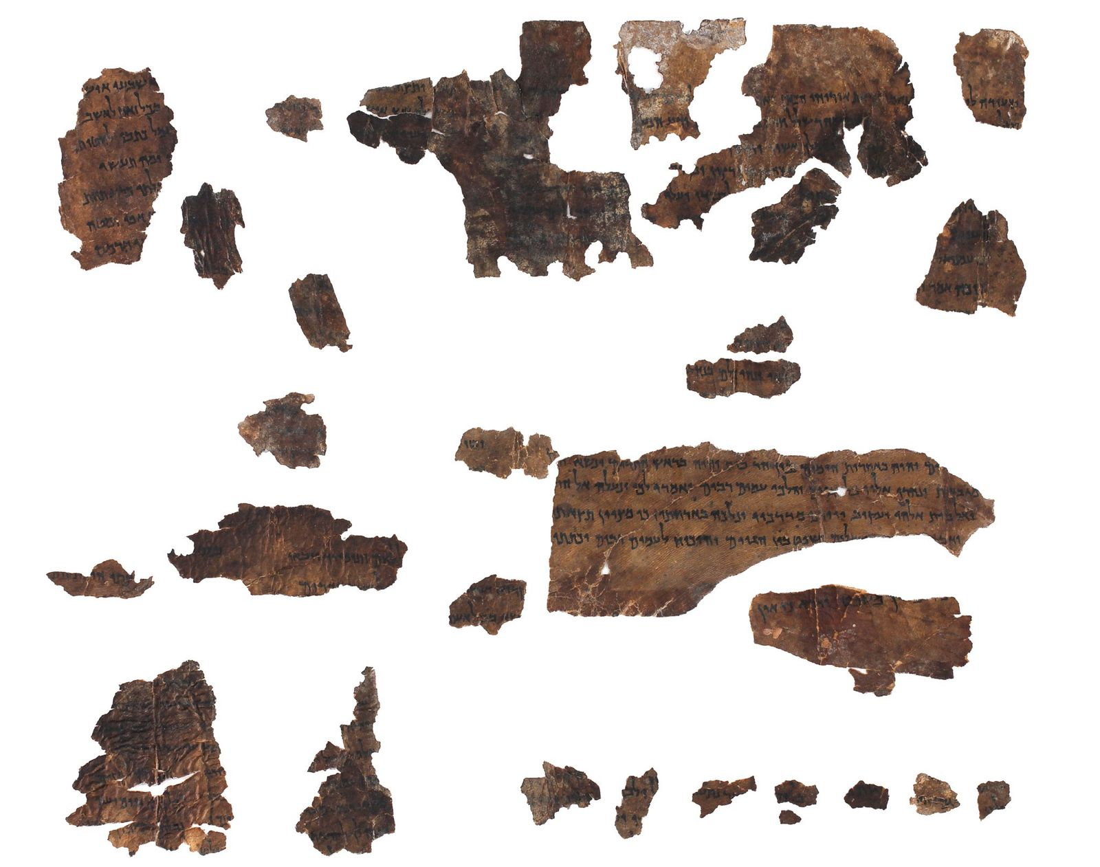 Ancient DNA offers clues to physical origins of Dead Sea Scrolls