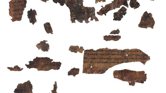 Researchers extracted animal DNA from 2,000-year-old fragments, including these from the book of Isaiah in the ...
