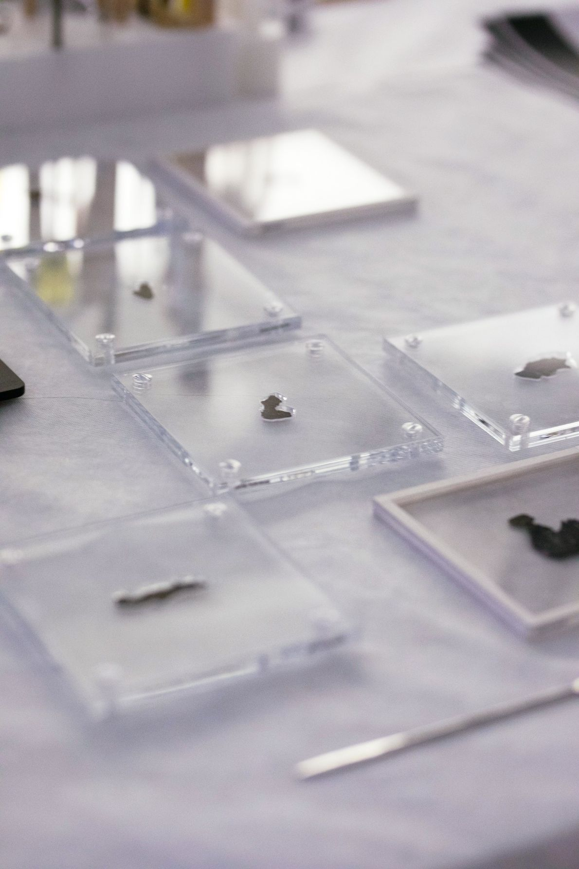 Housed in custom-cut acrylic mounts, the Museum of the Bible's Dead Sea Scroll fragments await inspection.