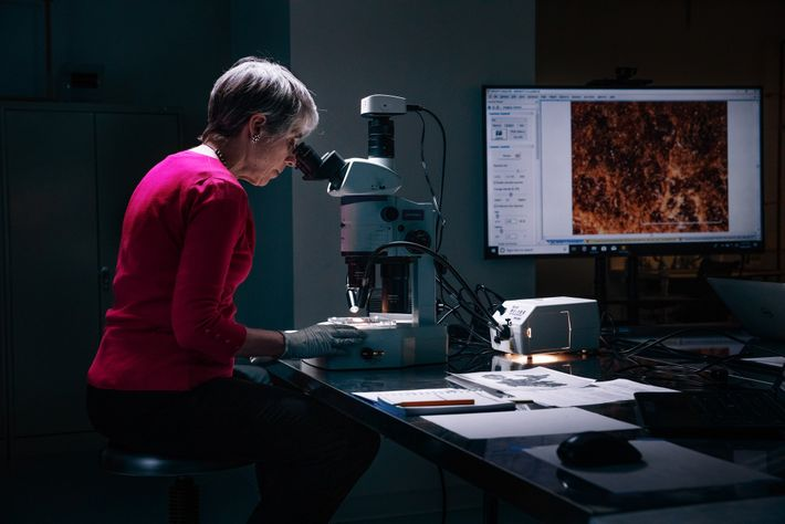 Investigator Abigail Quandt, the head of book and paper conservation at Baltimore's Walters Art Museum, examines ...