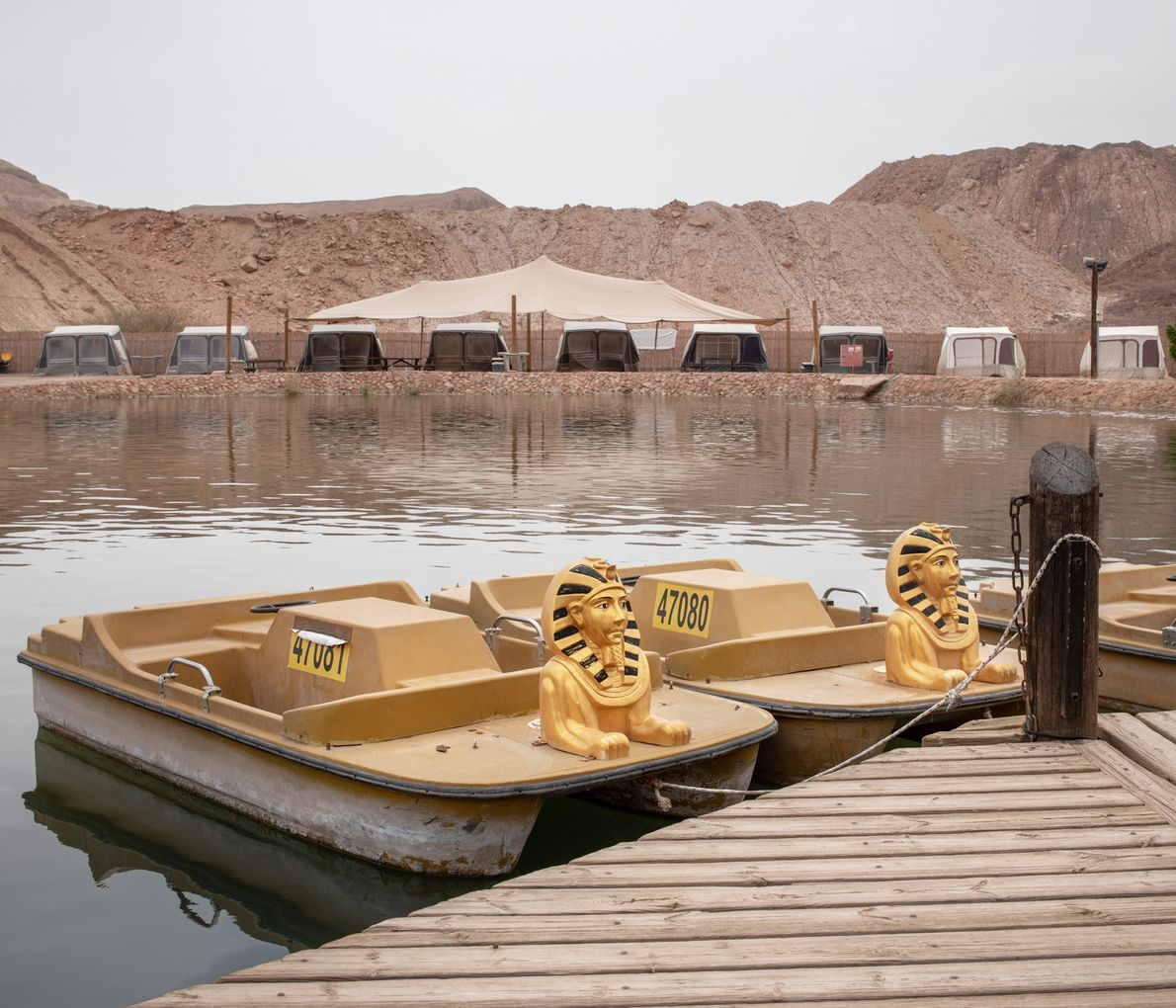 The Timna Oasis in Eilat is an artificial lake in the desert surrounded by a restaurant, ...