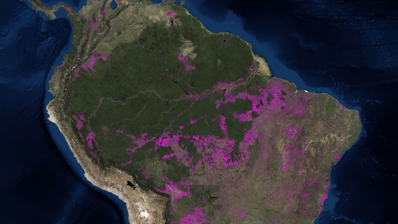 This Map Shows Millions Of Acres Of Lost Amazon Rainforest National Geographic
