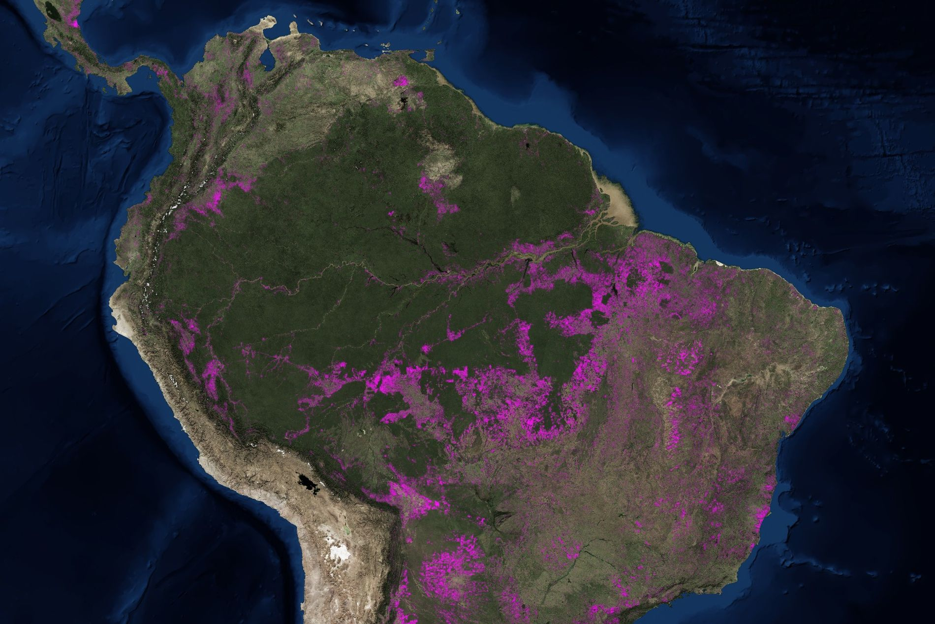 This map shows millions of acres of lost Amazon rainforest ... Deforestation Map on ecological succession map, climate change, hydroelectric dams map, land pollution, transboundary pollution map, environmental issue, world map, ozone depletion, exploitation of natural resources, global warming map, land degradation, groundwater depletion map, pesticide use map, greenhouse gas, species extinction map, glacier melt map, global warming, ecological footprint map, environmental degradation, water depletion map, tree plantation map, intensive farming map, danish language map, illegal logging, mass extinction map, forest reserves map, land use map, indoor air pollution map, environmental problems map, genetically modified crops map,