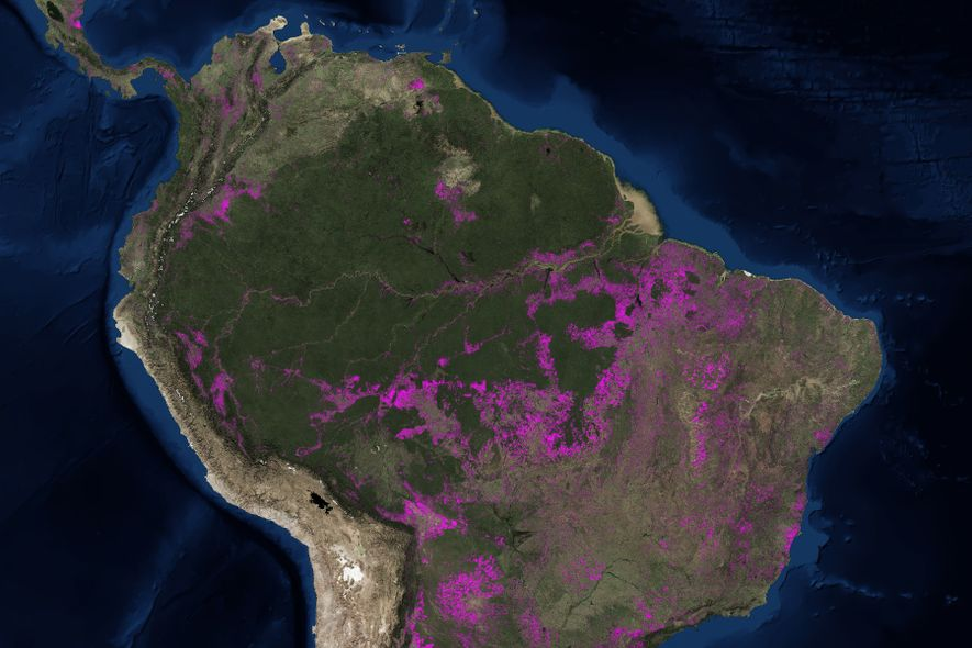 This map shows millions of acres of lost Amazon rainforest