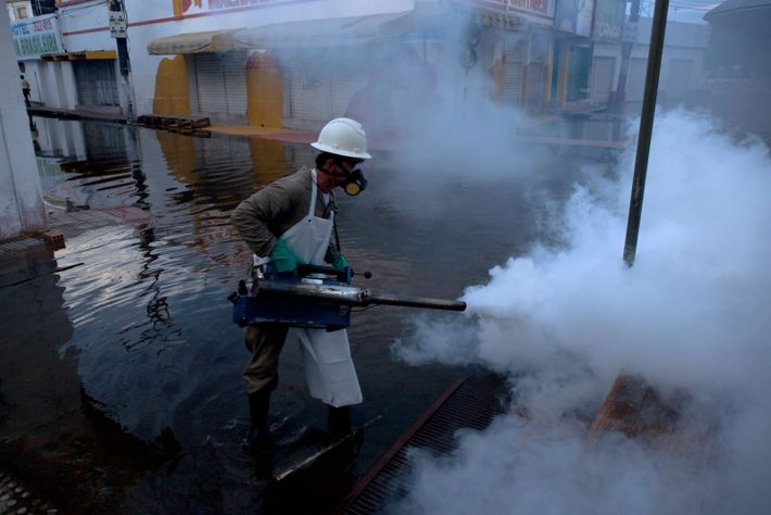 Pesticides are spread in an area of the Amazon that has flooded, to discourage the breeding ...