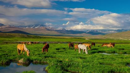 Pakistan's Most Wild and Beautiful Places