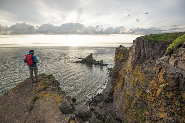 Hiking 7.5 miles (12 km) along the cliff tops to Cape Split gives unparalleled views out ...