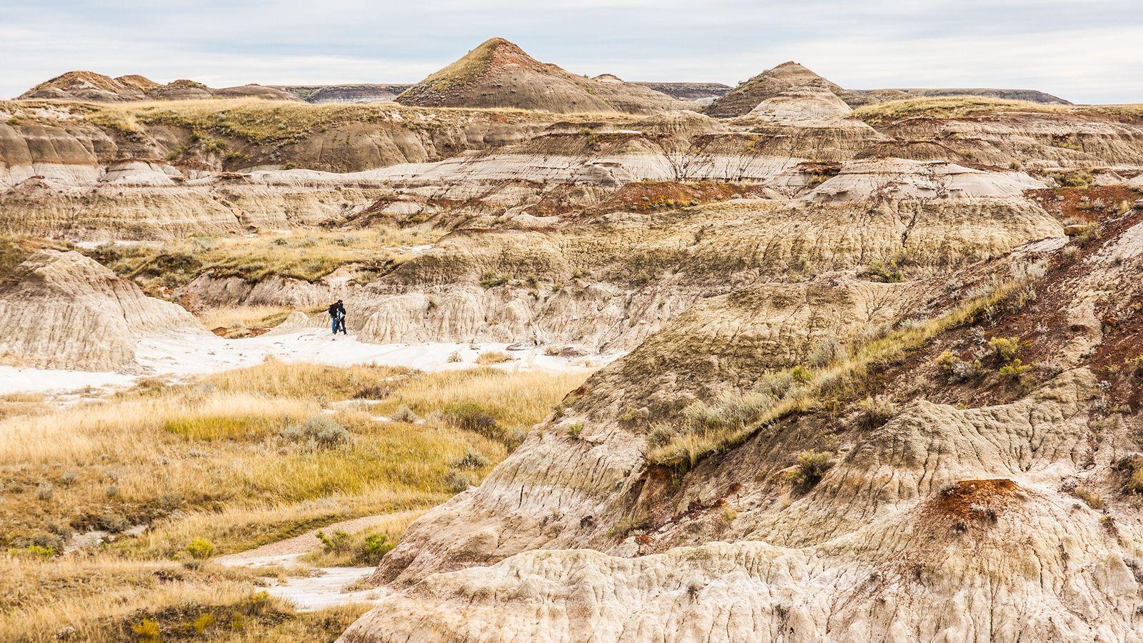 A visitor walks through Alberta's Dinosaur Provincial Park.