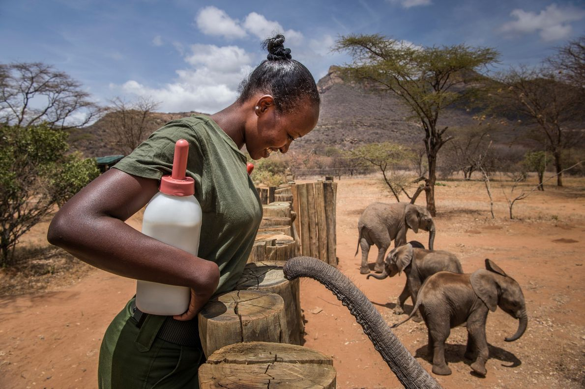 "Sasha Dorothy Lowuekuduk mixes formula for the babies. ""The sanctuary has changed my feelings about elephants,"" ..."