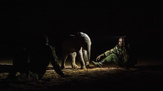 See Pictures of Warriors Who Once Feared Elephants and Now Protect Them