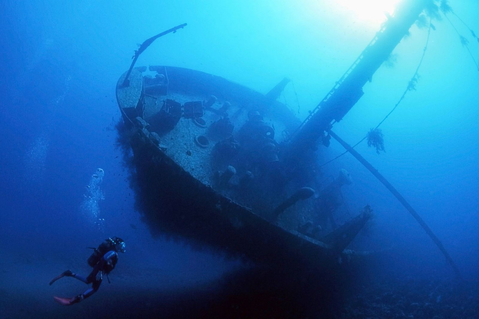 Scuba divers can also explore alternative dive sites, including ships and one C-130 Hercules plane, formerly ...