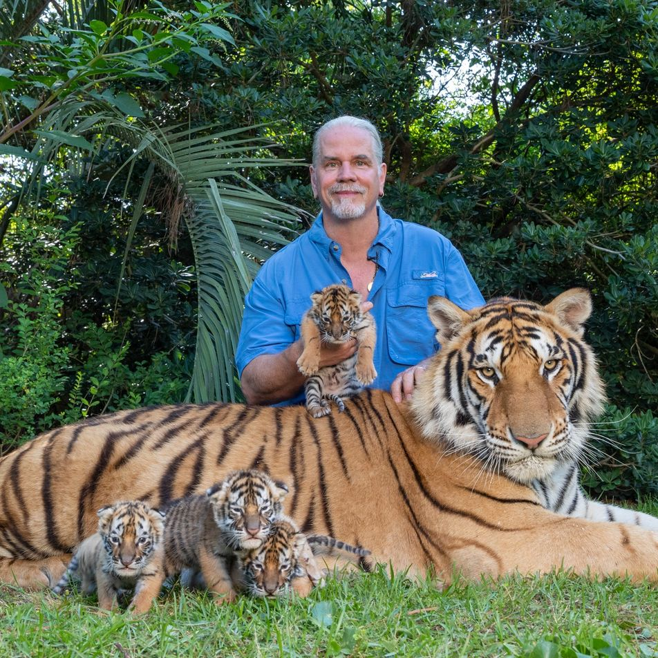 'Tiger King' star Doc Antle charged with wildlife trafficking
