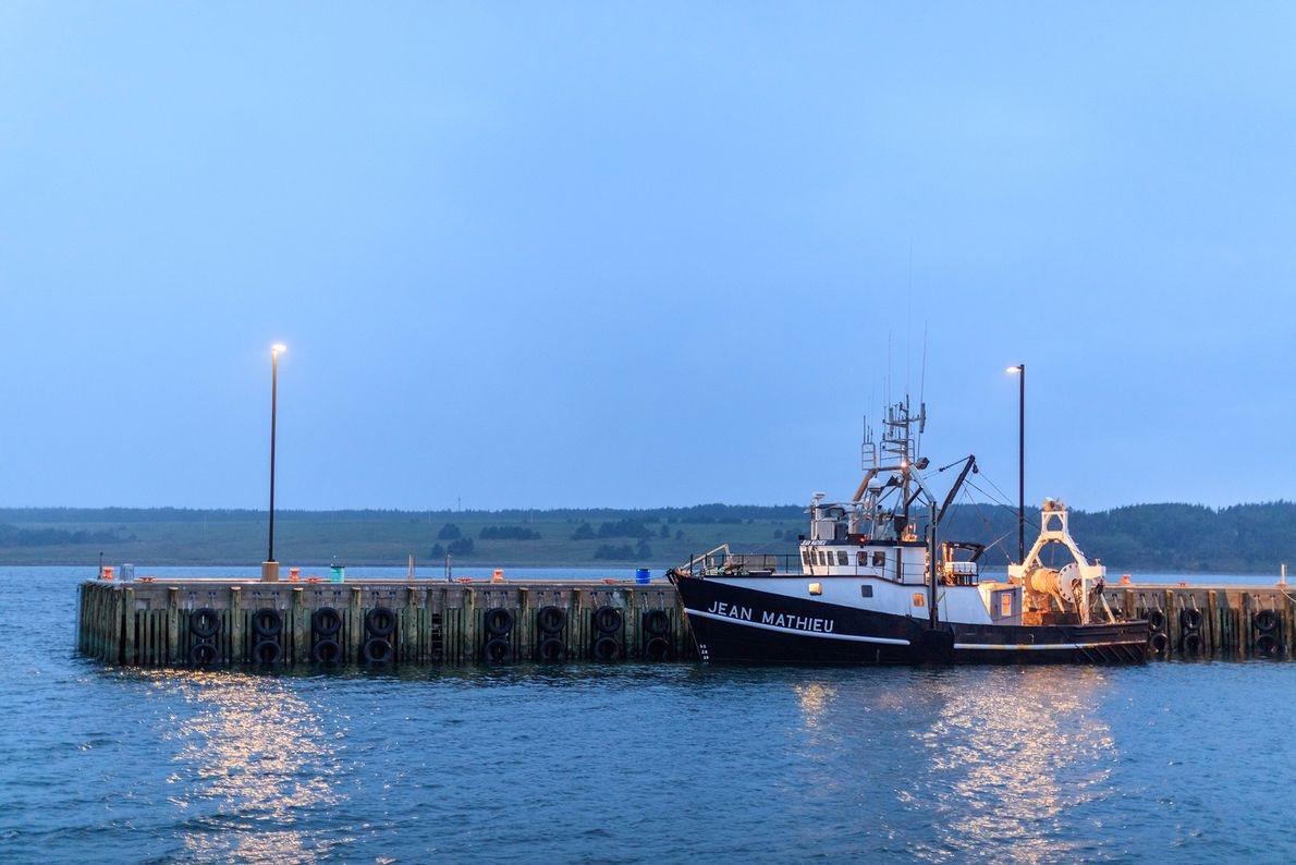 A fishing boat docks in the Chéticamp harbor. The harbor sits just below Cape Breton Highlands ...
