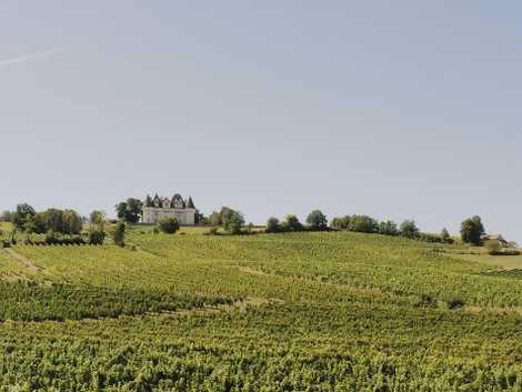 Caves, vineyards and clifftop castles: life along France's Dordogne River