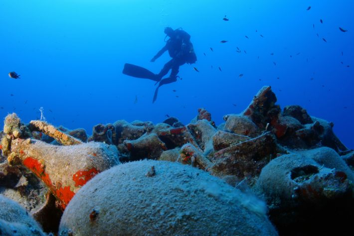 If you hold an advanced open water diving certification, be sure to book one of the ...