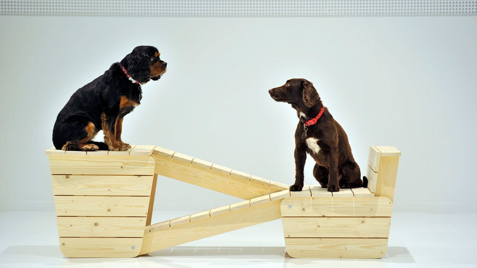 Architecture for Dogs showcases pieces created by some of the world's leading architects.