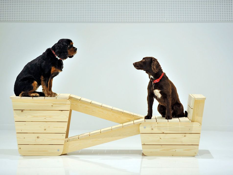 A peek into the curious world of dogs and design at Japan House London