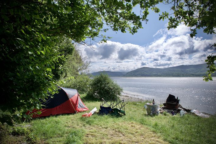 Right by the shores of the Dyfi Estuary, Smuggler's Cove Boatyard is a small and peaceful ...