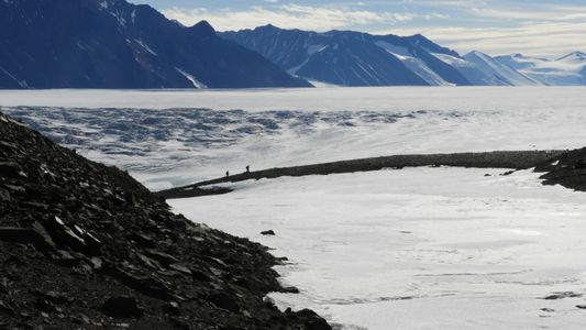 Soils from Antartica seem to contain no life—an unprecedented discovery