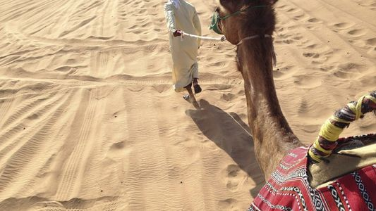 Family fun in Dubai: Discover traditions in the desert