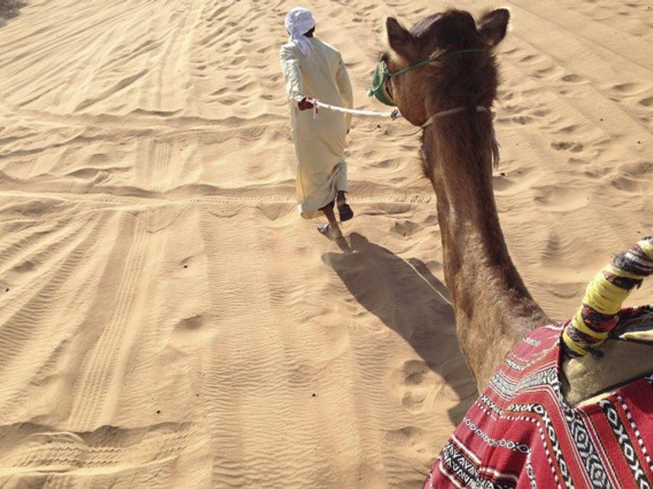 Family fun in Dubai: Discover traditions in the desert