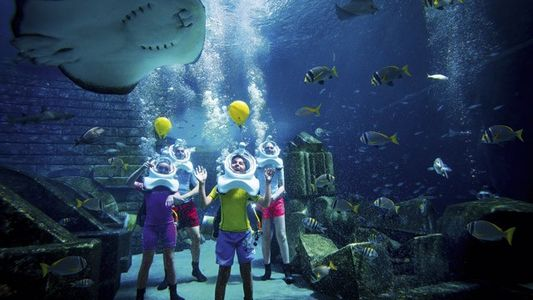 Family fun in Dubai: Sports and adrenaline
