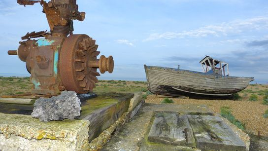Dungeness may conjure up images of a desolate landscape but in fact it is rich with ...