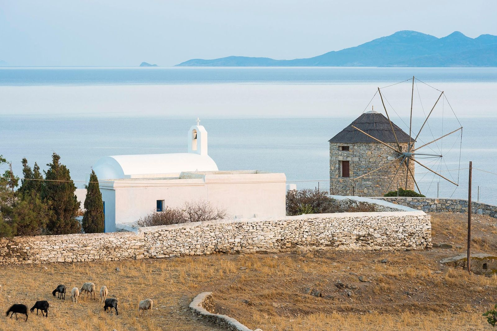 Schinoussa's undulating hills make it ideal for hiking, with views stretching out across the Aegean.