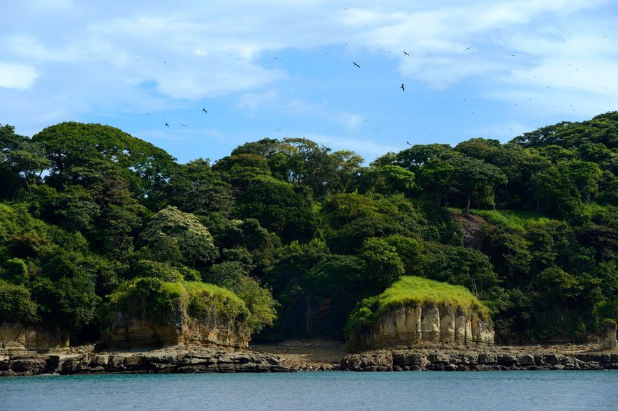 The rainforest-covered Isla Pacheca in Panama's Pearl Islands. While some of the islands have been developed ...