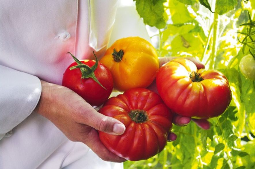 Tomatoes take a leading role in the cuisine of Alicante.