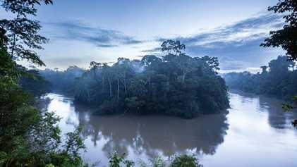 Ecuador: The hothouse heart of the jungle